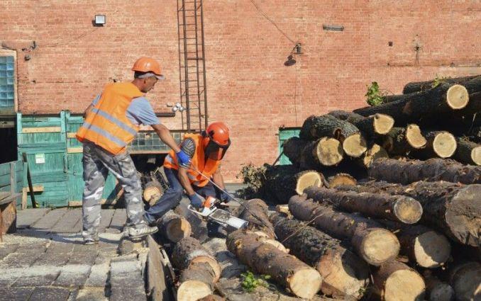 Деревопереробне підприємство в ДП «Ківерцівське лісове господарство».