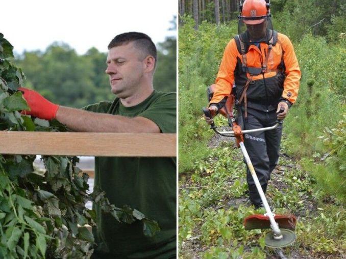 Волинським лісом опікуються справжні професіонали.