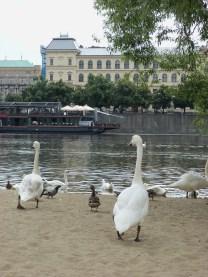 Prague - Photo: Senem Peace