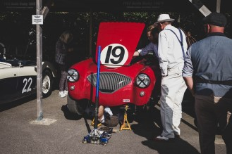1953 Austin Healey 100/4 getting some attention, Goodwood Revival.