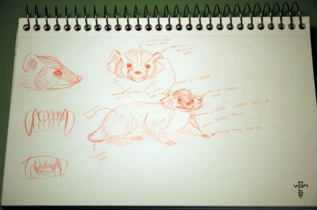 badger sketches