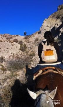 Mendoza - Passeio de cavalo