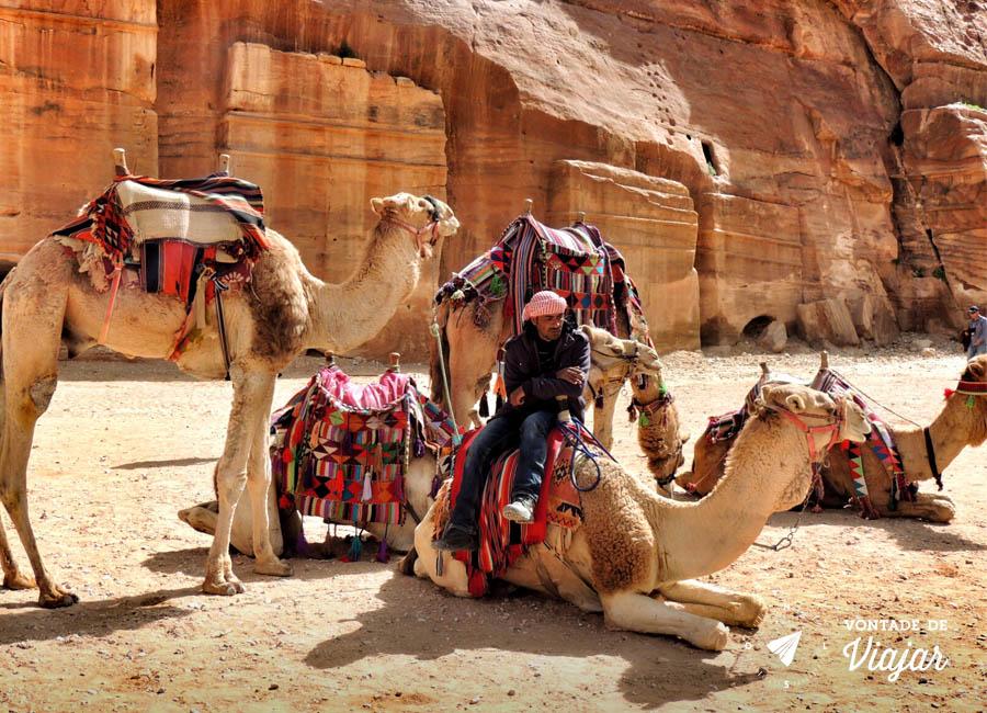 petra-guia-com-camelos