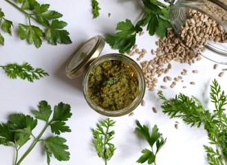 Möhrengrün Pesto: Möhrengrün verwenden und Zero Waste kochen