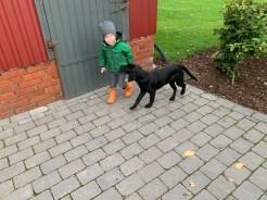 Brunhilde_09.10.2019