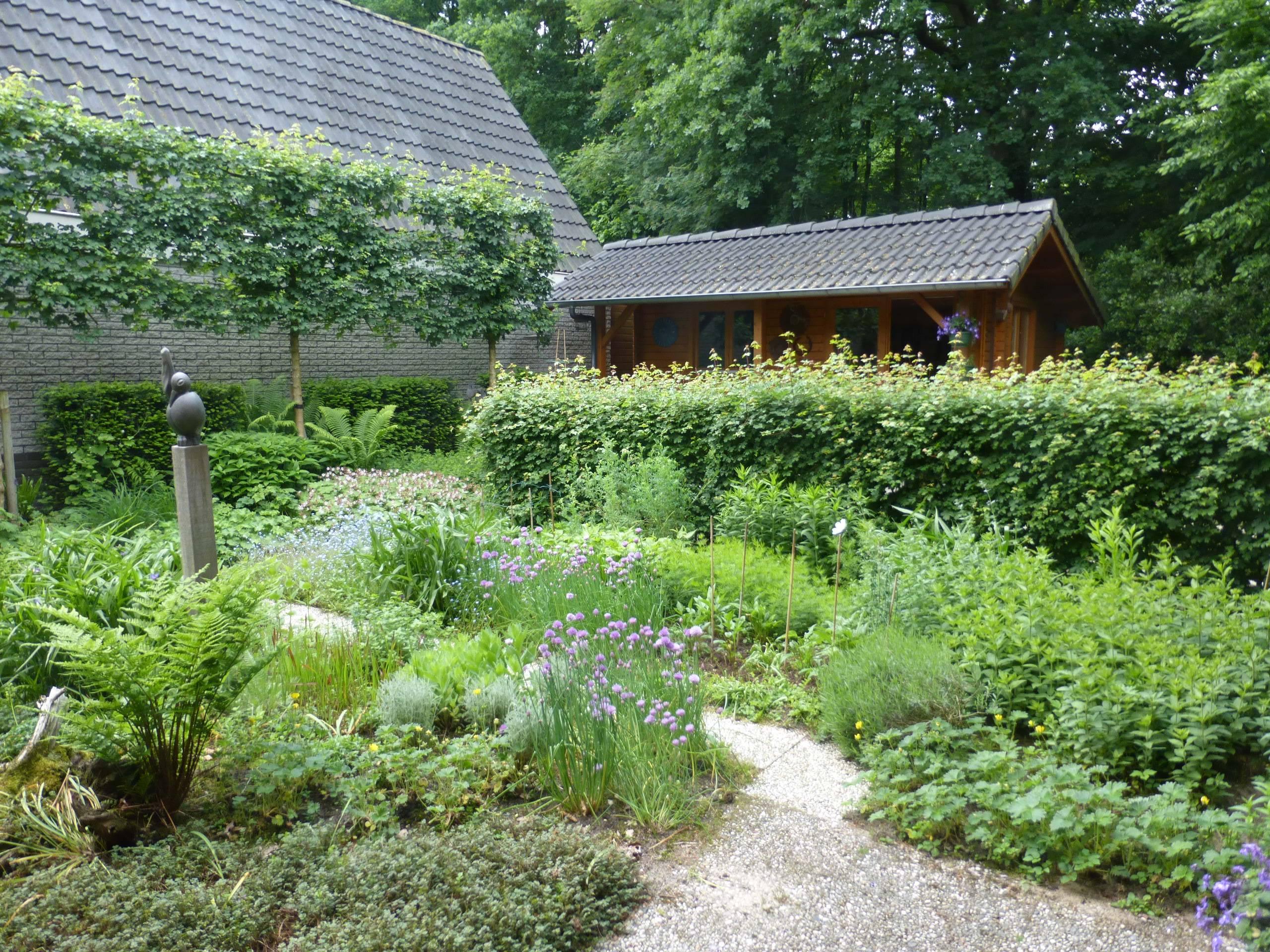 IVN Online workshop: Kennismaken met een levende tuin!