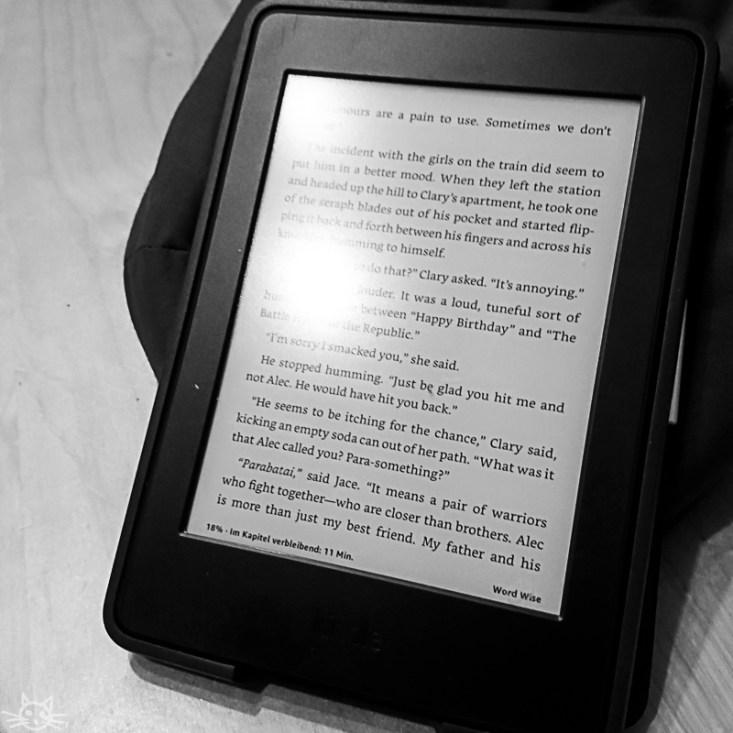 ein paar Sekunden Ruhe, ich lese nachdem ich die neue Buchserie von Cassandra Clare und die Fernsehserie zu den Büchern gefunden habe wieder City of Bones