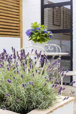 13. 0401-garden-vorbild-architecture-13CSI-intro