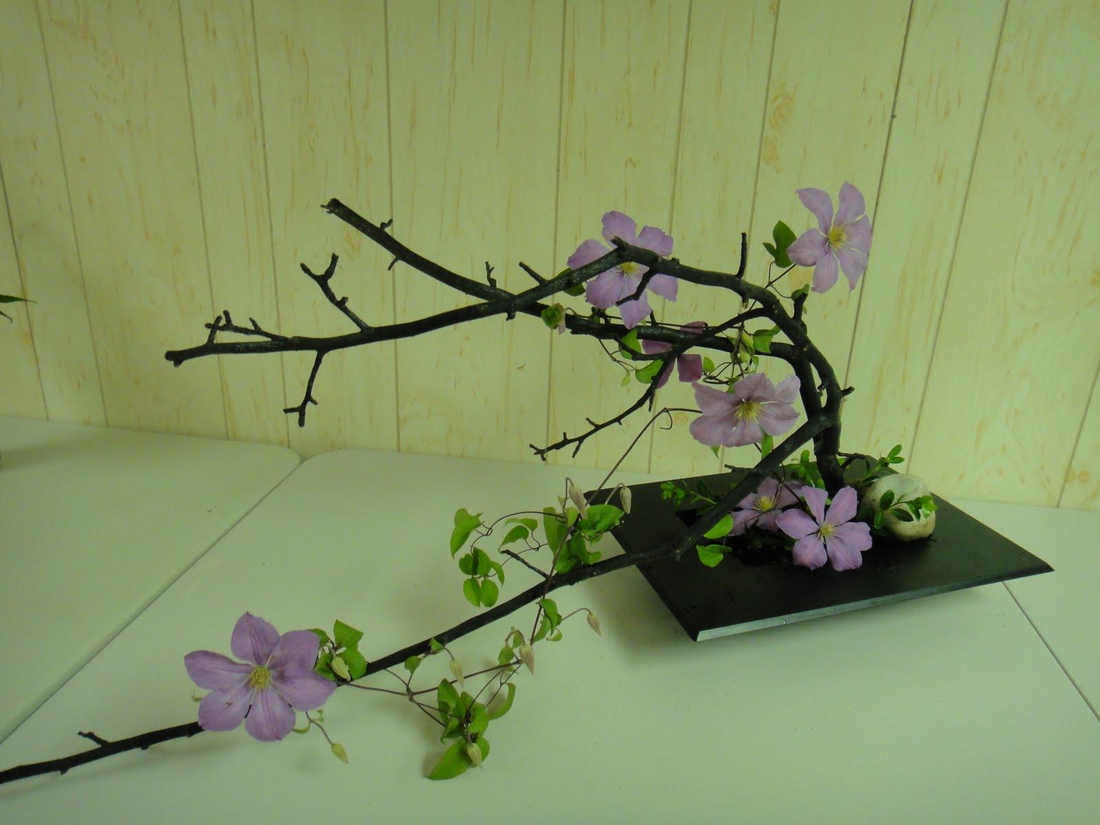 L Ikebana  Vorrei avere il pollice verde