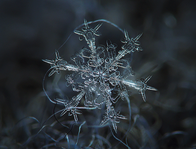 Gorgeous Snowflake courtesy of article at Accuweather.com