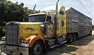 Decomisan más de un millón de pesos en camarote de camión