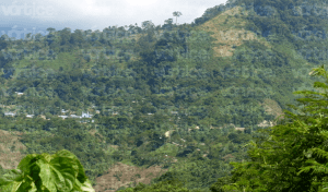 Asesinan a dos policías de Chiapas en una emboscada en Sabanilla