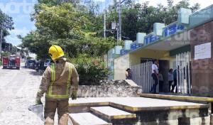Abejas atacan a 15 estudiantes en Chiapa de Corzo