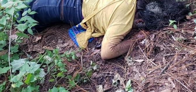Hallan cadáver de una joven de 15 años entre la maleza de la autopista