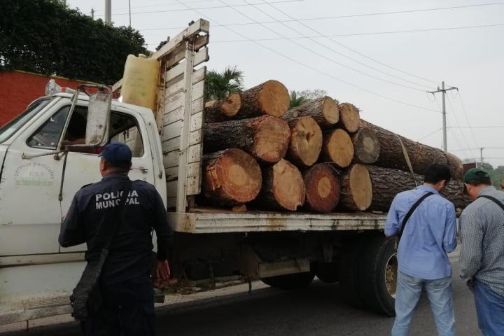 Implementa Fiscalía operativo contundente a favor del medio ambiente: Llaven Abarca