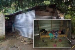 Hallan a dos pequeñas sin vida dentro de una vivienda en Tila