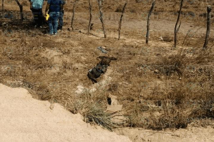 Localizan dos cadáveres putrefactos dentro de una alcantarilla