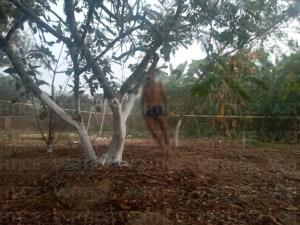 Hallan a hombre ahorcado en un árbol en Villa de Acala