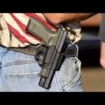 Gutfeld: I prefer facts when it comes to guns