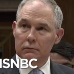 GOP Rep On EPA Admin Scott Pruitt: He's Certainly Not In The Clear' | Hallie Jackson | MSNBC