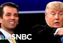 New Details On Trump Jr.'s Meeting With Russians At Donald Trump Tower | The 11th Hour | MSNBC