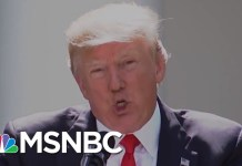 What Is President Donald Trump's Stance On Climate Change? | Velshi & Ruhle | MSNBC