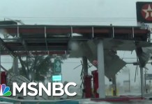 Jeb Bush: Stop Campaigning For Now And Help Out | Morning Joe | MSNBC