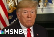 President Donald Trump Was In Room During Hush Money Talks | Morning Joe | MSNBC