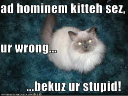 Ad hominem kitteh sez, ur wrong... ...bekuz ur stupid!