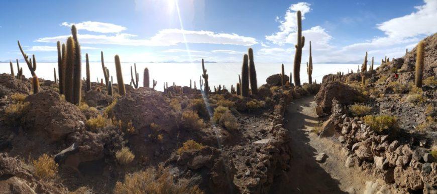 Voyage en Bolivie - Incahuasi