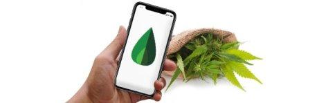 Selection des applications mobiles sur le cannabis