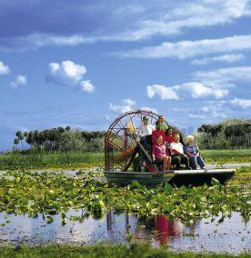 Un petit détour vers les Everglades s'impose pour tout séjour en Floride
