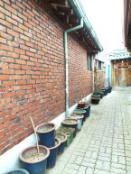 Ikseondong Seoul Hanok Village 031