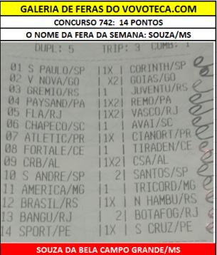 742 souza 14p ms
