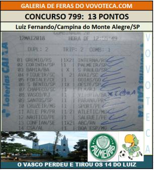 799 13P LUIZ FERNANDO