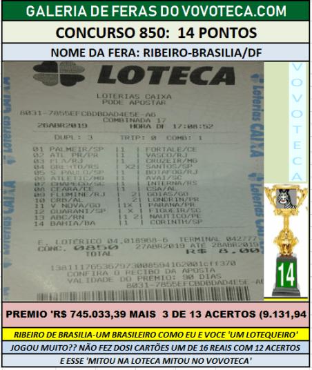 850 14P RIBEIRO DF