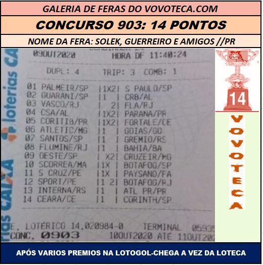 903 14P RICARDO SOLEK
