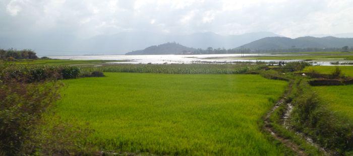 Rizières et lacs dans la vallée