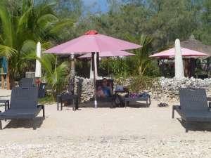 Journée repos et aquarium naturel à l'île aux canards. Stéphanie ne décolle plus !