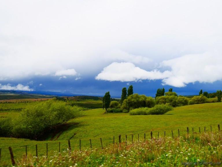 Le genre de pays où tu ne te demandes jamais quelle va être la météo du jour, puisque tu sais qu'il va pleuvoir. Tu ne sais pas à quelle heure, ni pendant combien de temps, mais tu le sais hihi