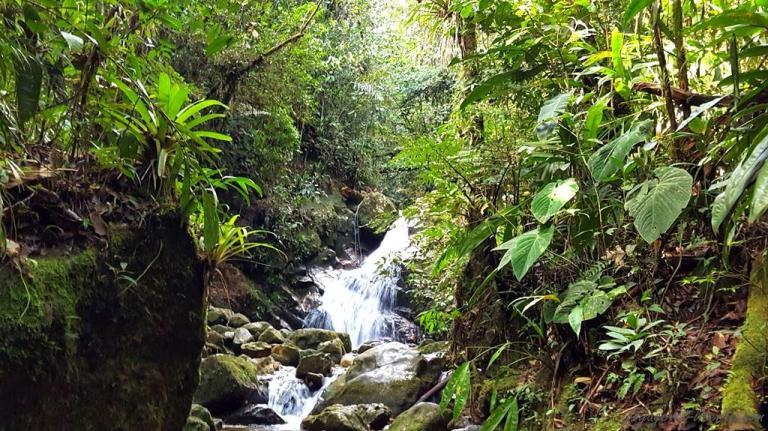 #guatape #colombie #lac