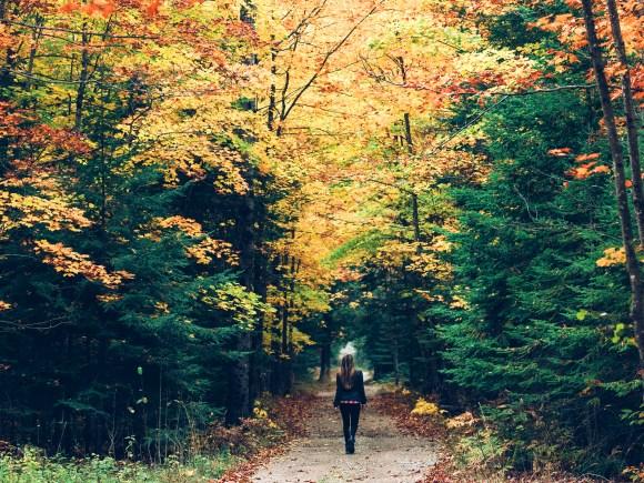 Femme se promenant dans un sentier forestier entourée de couleurs automnales.