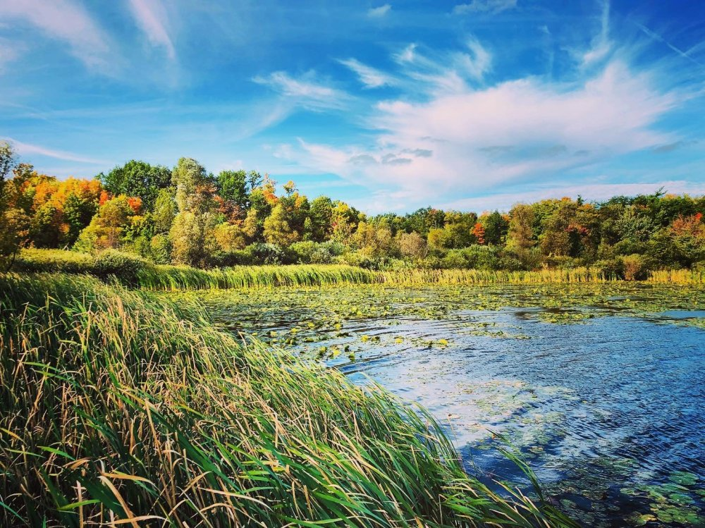 Un lac entouré de couleurs d'automne à la zone de protection de la nature du Lac Heart