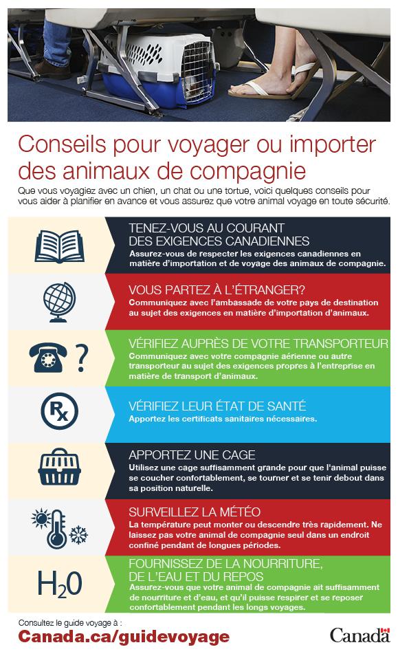 Voyage Dans Le Temps Preuve : voyage, temps, preuve, Guide, Voyage, Voyage.gc.ca