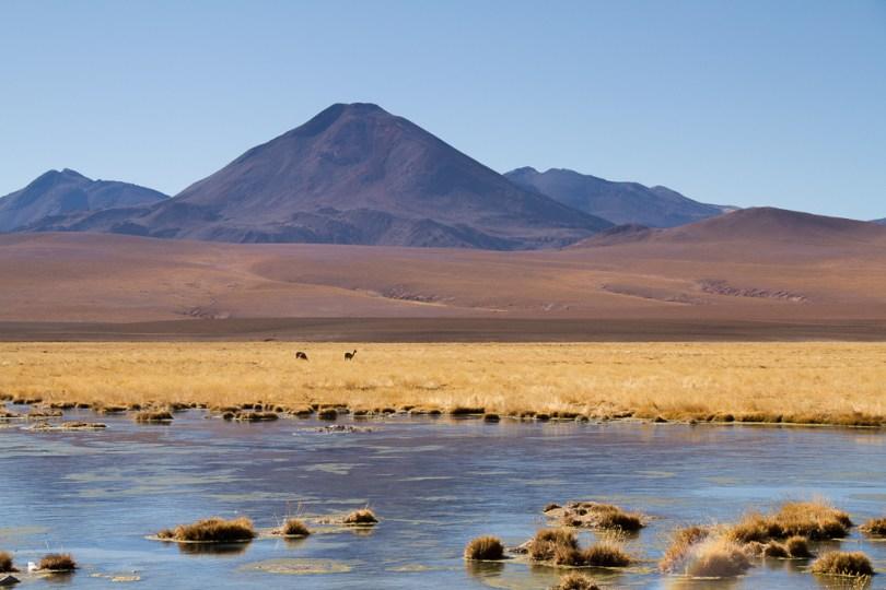 Geyser-El-Tatio-Chile-42
