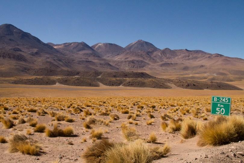Geyser-El-Tatio-Chile-46