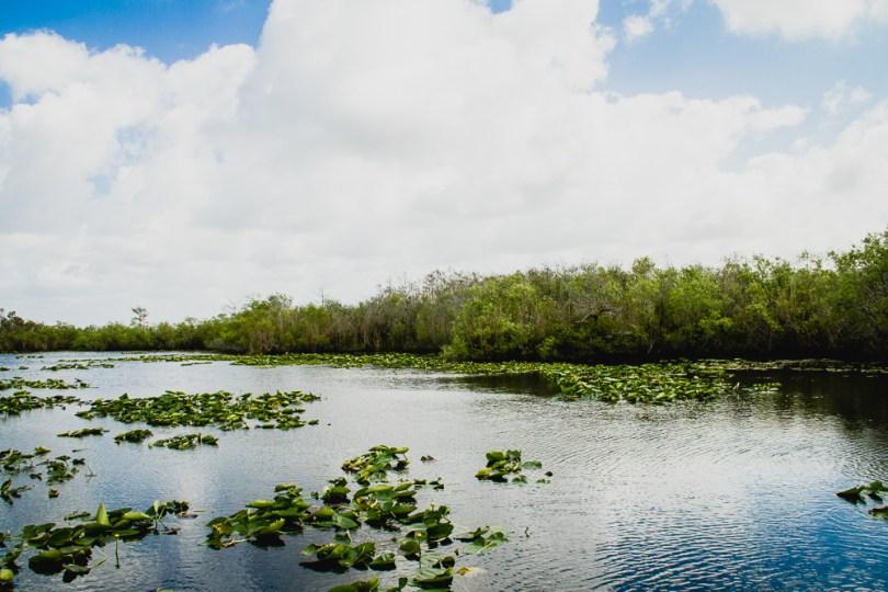 everglades Road trip en Floride et Louisiane