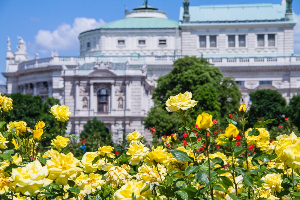 parcs et jardins rosiers vienne