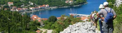 Gyphjolik en randonnée en Croatie