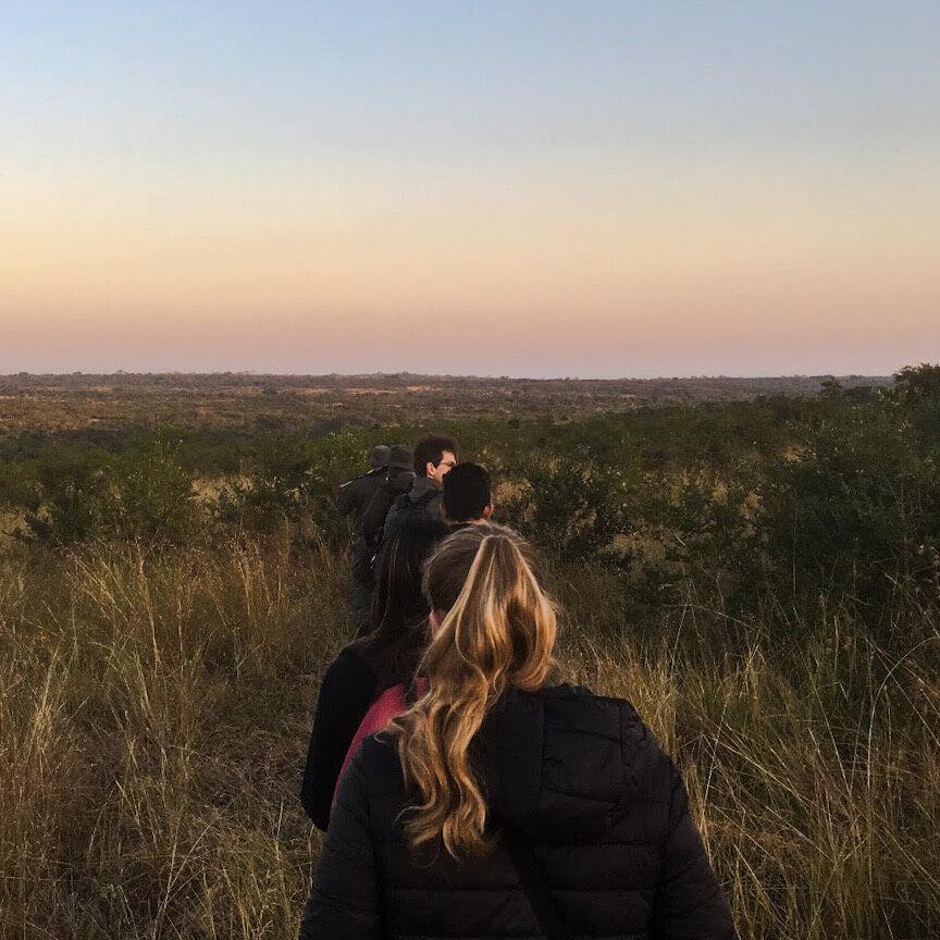 randonnée-dans-le-bush